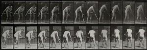 view A man scything. Photogravure after Eadweard Muybridge, 1887.