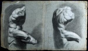 view The Belvedere Torso. Black chalk drawing with white highlights by J.J. Masquerier.