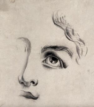 view A fragmentary drawing of a face. Pencil drawing.