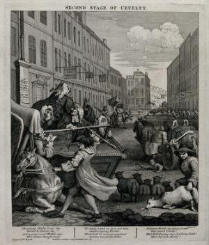 view Tom Nero, a hackney coach driver, beats with sadistic cruelty a disabled horse; a herdsman cudgels a sheep and a sleeping drayman runs over a boy with a hoop. Engraving by William Hogarth, 1751.
