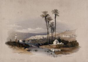 view Palm trees at Jenin, possibly the site of ancient Jezreel. Coloured lithograph by Louis Haghe after David Roberts, 1843.