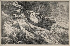 view Landscape showing rocks and trees. Lithograph by N. Strixner after J.F. Ermels, ca. 1800.