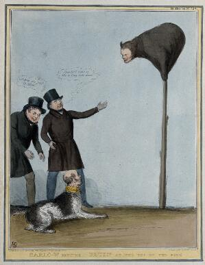view Daniel O'Connell and Joseph Hume encourage a dog with the head of Gisborne to leap at a bear with the head of Francis Bruen perching on a pole. Coloured lithograph by H.B. (John Doyle), 1839.