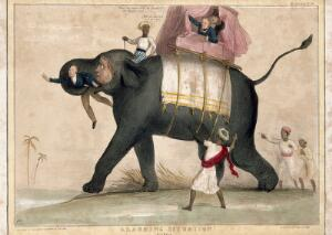 view An elephant running wild with Lord Aukland in its trunk. Coloured lithograph by H.B. (John Doyle), 1843.