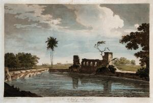 view Landscape with pool and ruin, Shekoabad, India. Coloured etching by William Hodges, 1788.