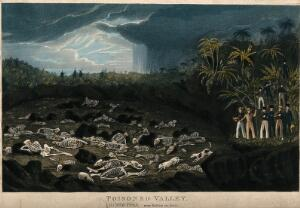 view Java: human skeletons lying in a valley poisoned by volcanic gases, being watched by travellers. Coloured aquatint.
