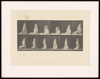 view A clothed woman walking and bending to lift the hem of her dress. Collotype after Eadweard Muybridge, 1887.