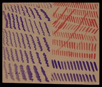 view Left, purple and red diagonals crossed through diagonally in red; right, purple spirals. Watercolour by M. Bishop, ca. 1977.