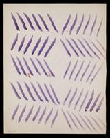 view Mauve diagonals. Watercolour by M. Bishop, ca. 1976.