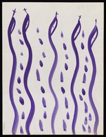 view Five snakes. Watercolour by M. Bishop, 1969.