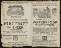 view Dry feet and easy shoes... : Jones's celebrated waterproof composition... : Jones's Gloucestershire Specific for foot-rot in sheep : a disinfectant : the most speedy and certain cure, without injury to the foot / manufactured and sold wholesale, retail, and for exportation, by John Milton Jones, Gloucester.