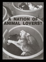 view A nation of animal lovers? / Friends of Animals Under Abuse.