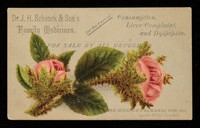 view Dr. J.H. Schenck & Son's family medicines for the cure of consumption, liver complaint, and dyspepsia : for sale by all druggists / Dr. J.H. Schenck & Son.