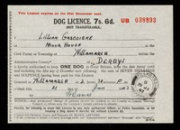 view Dog Licence : 7s. 6d. (not transferable).