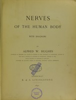 view Nerves of the human body.