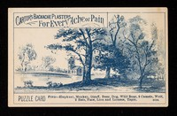 view Carter's Backache Plasters for every ache or pain : puzzle card.