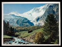 view Steroxin antibacterial and antifungal ointment : the Alphubel and Täschhorn, Saas-Fee (Swiss Alps).