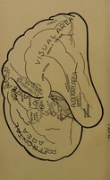 view Brain and personality ; or, the physical relation of the brain to the mind / by William Hanna Thomson.