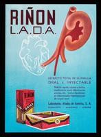 view Riñon L.A.D.A. : extracto total de glandula, oral e inyectable ... / LADA, Laboratorios Aliados de América, S.A.