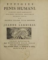 view Effigies penis humani, injectâ cerâ praeparati exhibens inventa anatomica aliquot nova / et proprio colore typis impressa à Joanne Ladmiral.